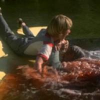 Piranha (1978 usa)